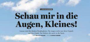 Lamas-BERGWELTEN